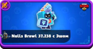 Nulls Brawl 37.238 с бойцом Эш
